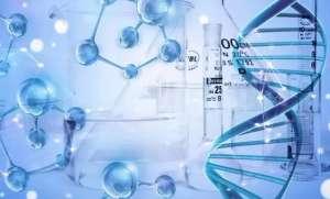 新研究说体细胞突变会加速衰老!